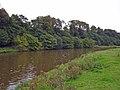 Kingsley - River Weaver near Catton Hall - geograph.org.uk - 250866.jpg