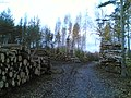 Kivikonlaita - panoramio (6).jpg