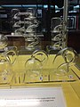 Klein Bottles (16318269150).jpg