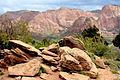 Kolob Canyons04.jpg