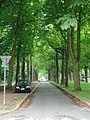 Kortrijk Astridpark-2.JPG