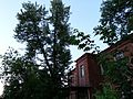 Kotovsk, Tambov Oblast, Russia - panoramio (27).jpg