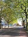Krakeelpolderweg - Delft - 2008 - panoramio.jpg