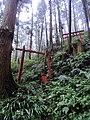 Kudoyama torii.jpg