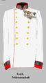 Kuk-Feldmarschall Gala 1918.png