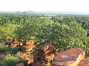 Kununurra, Western Australia - Kununurra in summer from Hidden Valley National Park lookout
