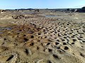 La Perouse NSW 2036, Australia - panoramio - noah.odonoghue (16).jpg