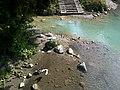 La Roya Breil Lac Pont La Roya Oiseaux - panoramio.jpg