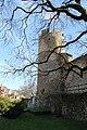La Tour-de-Peilz - panoramio (80).jpg