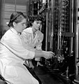 Laboratory workers Joanne Rose (left) and Betty Lindsay work in the Polymer Rubber Corporation laboratory, Sarnia, Ontario (39243396120).jpg