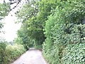 Ladd's Lane, Holborough - geograph.org.uk - 1961439.jpg