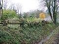 Laid hedge, Upton - geograph.org.uk - 1584522.jpg