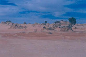 Lake Mungo - The shore of Lake Mungo.