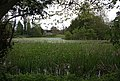 Lake at Canon Frome Court - geograph.org.uk - 1274267.jpg