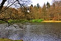 Lake behind the Rozendaal Castle - panoramio.jpg