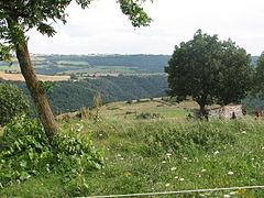 Landscape-IMG 6915.JPG