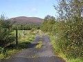 Lane, Carrickleitrim - geograph.org.uk - 1505805.jpg