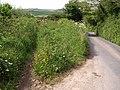 Lane near Barnston Farm - geograph.org.uk - 1324043.jpg