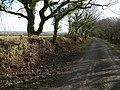 Lane on Tregeare Down - geograph.org.uk - 718978.jpg