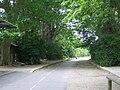 Langlade zöld út 2007-07-20.JPG