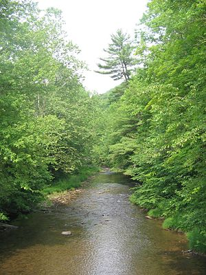 Larrys Creek - Larrys Creek in Salladasburg is state approved and stocked for trout fishing in season.