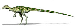 Leaellynasaura amicagraphica