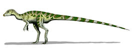 Artist's impression van Leaellynasaura amicagraphica