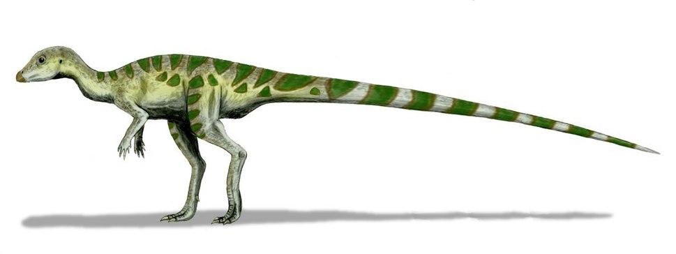Leaellynasaura BW