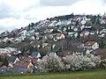 Leonberg - panoramio (14).jpg