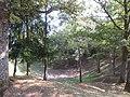 Les entonnoirs de Leintrey - Vue sur un entonnoir - 002.jpg