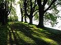 Lindenhofpark (Lindau) - DSC06999.JPG