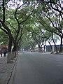 Liuyuan Road - panoramio.jpg