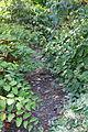Locust Creek looking upstream.JPG