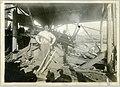 Logging employees at work (13450380294).jpg