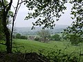 Looking down to Hilcombe Farm - geograph.org.uk - 459806.jpg