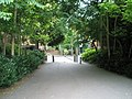 Looking from Allen House Grounds into Chertsey Street - geograph.org.uk - 1402933.jpg