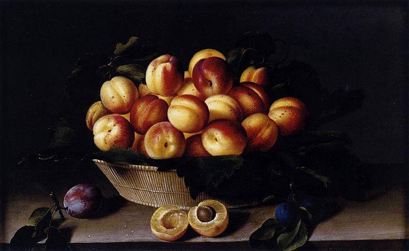 File:Louise Moillon - Basket of Apricots - WGA16078.jpg