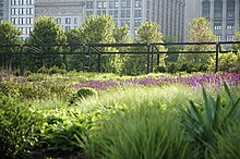 Lurie Garden Wikipedia