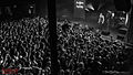 Macklemore- The Heist Tour Toronto Nov 28 (8228404438).jpg