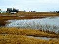 Madison Audubon's Goose Pond Sanctuary - panoramio.jpg