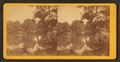 Magnolia Cemetery. (Lake), by Quinby & Co..png