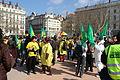 Manif EPR Lyon Bellecour drapeaux Verts.jpg