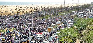 2017 pro-jallikattu protests - Jallikattu protesters gathering at Chennai Marina Beach