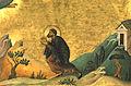 Martinian, monk of Caesaria in Palestine (Menologion of Basil II).jpeg