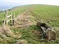 Memorial Bench on Iford Hill - geograph.org.uk - 1143825.jpg
