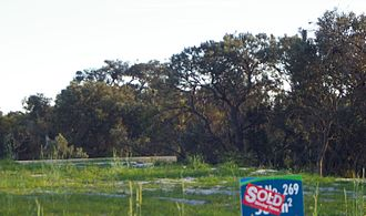 Land clearing in Australia - The distribution of Banksia largely coincides with areas of high population density, and large tracts of Banksia woodland are cleared for urban expansion every year.  In this photo, land clearing for housing threatens the Banksia menziesii species in Canning Vale, Western Australia.