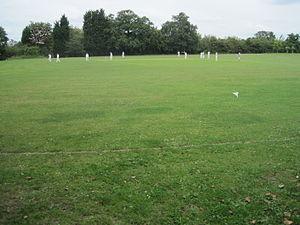Mill Hill Park - Image: Mill Hill Park cricket match