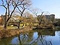 Mill Pond - Winchester, MA - DSC04170.JPG