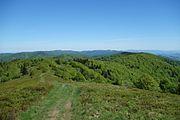 Minčol (vrch v Čergove) 21.jpg
