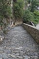 Minerve, France - panoramio (88).jpg